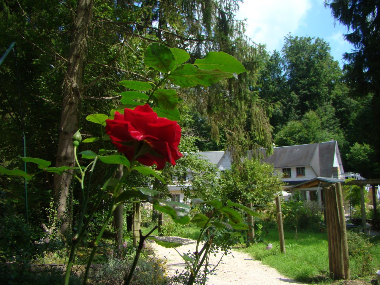 B&B le jardin de saint jean depuis le parking