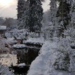 fontaine en hiver