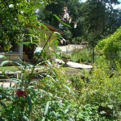 Le BBQ du B&B le jardin de saint jean