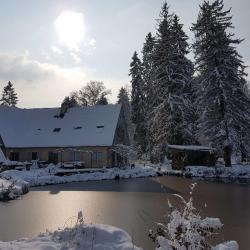 Etang du jardin de saint jean gelé