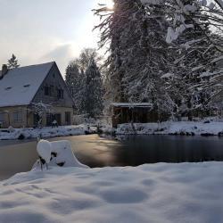 Etang gelé hiver 2018