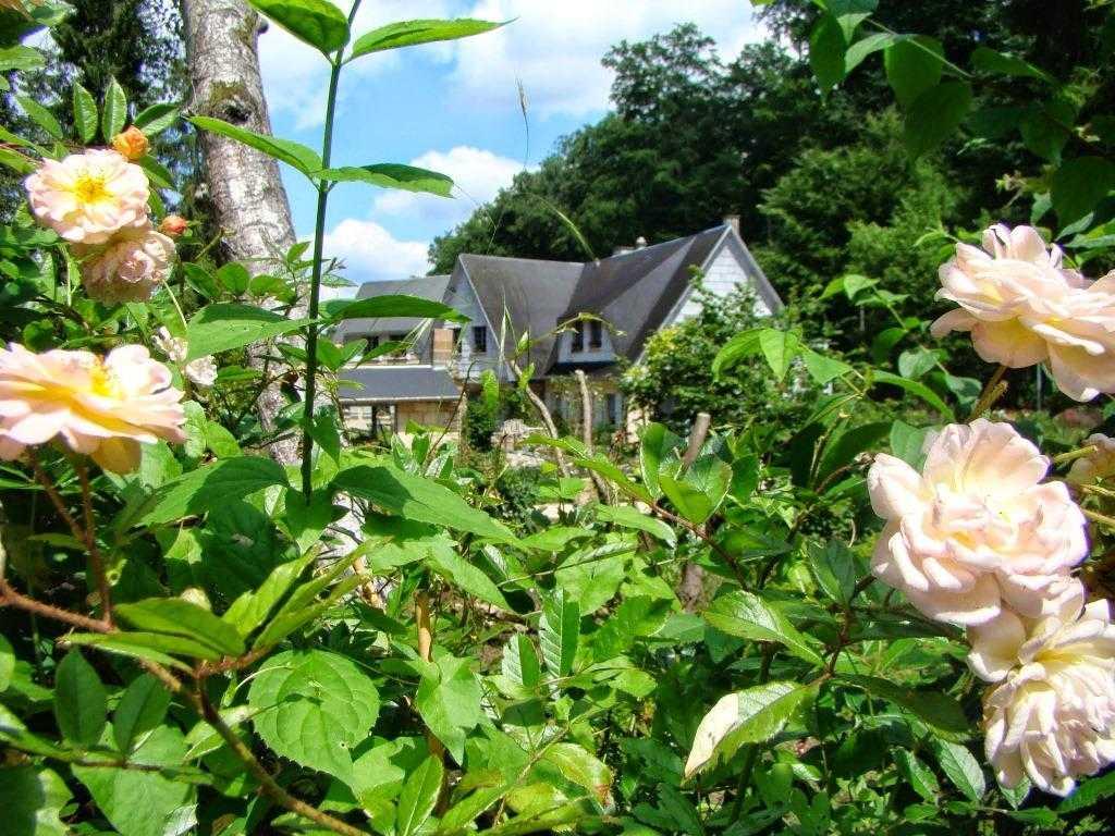 Le jardin for Le jardin des 6